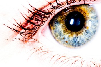 Image of an eye and lashes